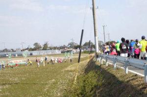熊本城マラソンコース