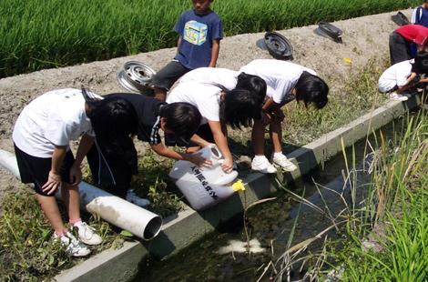 EM活性液で水浄化